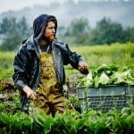 Биоземеделието може да изхрани цялото човечество