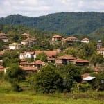 Внасяме българи със зелени карти