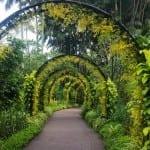 Вижте 5 от най-красивите ботанически градини в света (СНИМКИ)