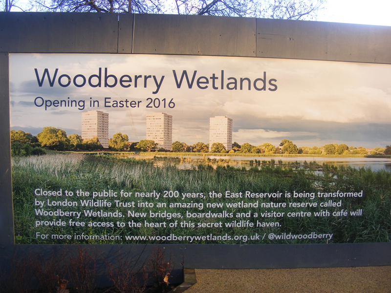 Woodberry_Wetlands