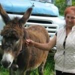 """""""Желязната леля"""" е единствен жител в бобошевско село"""