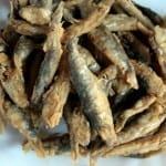 По морето: Цацата сее коки и хепатит, царевицата- чревни инфекции
