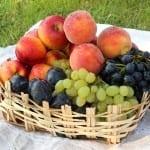 България е първа в ЕС по ръст на биопроизводителите