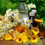 Вибрации и енергийно приложение на традиционни български билки