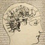 ТРИ ЖЛЕЗИ ЗАДВИЖВАТ електроцентралата на ЧОВЕШКОТО тяло и Кристала на мозъка