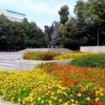 """Хиляди красиви цветя красят площад """"Съединение"""" на 6 септември"""