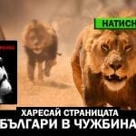 rp_bulgari-v-chujbina.jpg