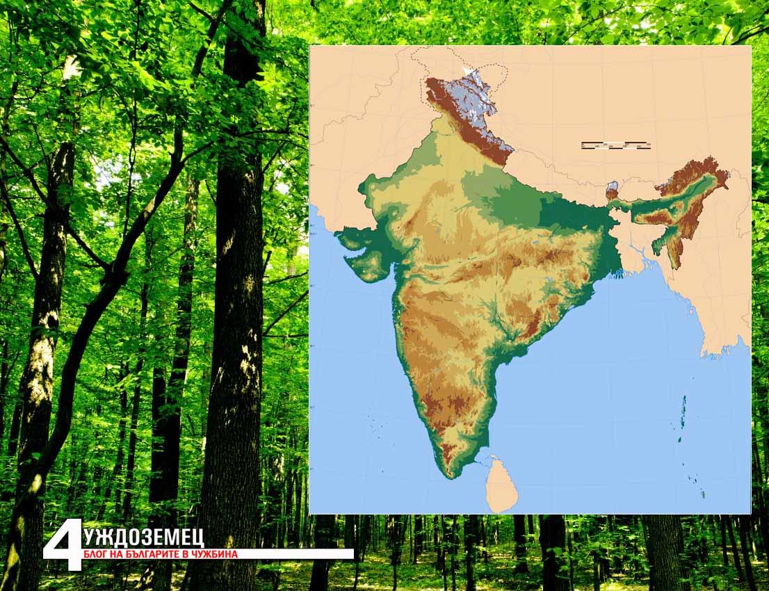 Индийски щат планира да засади 50 милиона дървета за 24 часа!