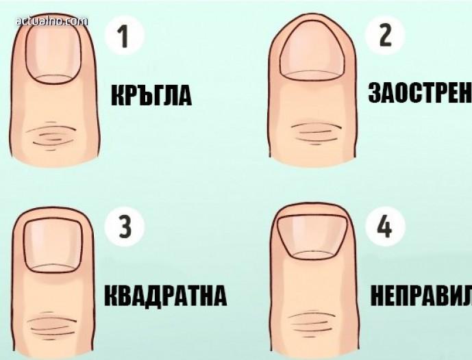 Формата на пръстите на ръцете ви издават много за вас