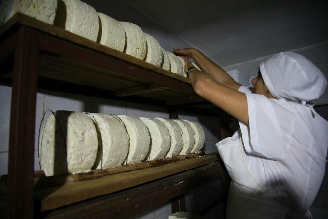 Европейски чиновници ще учат родните фермери как се прави истинско сирене
