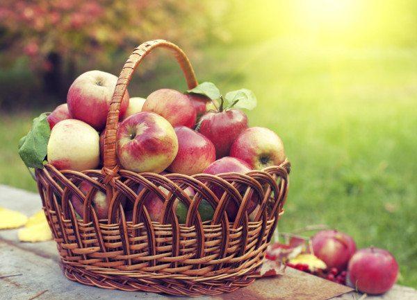 Кажете СТОП на киселините! Яжте всеки ден….