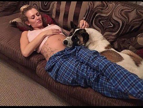 Кучето упорито отказвало да се отдели от корема ѝ! Когато лекарите най-сетне разбрали защо, изненадата ги оставила без думи!