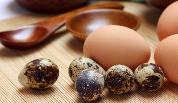 Яйцата от пъдпъдък – алтернатива на лекарствата