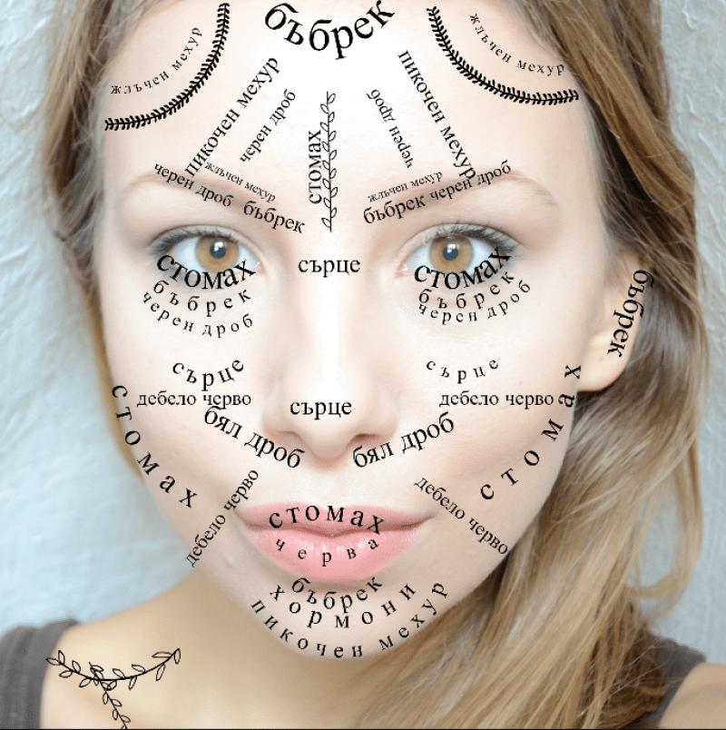 Картографията на лицето помага как да общуваме с организма си