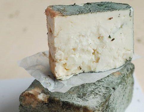 Зеленото сирене от Черни Вит смая света – млякото на Тетевенската овца и тайната на естествената плесен. Вижте защо се превърна в уникален