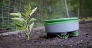 CNBC показа малко работче което ще ви отърве от плевелите в градината
